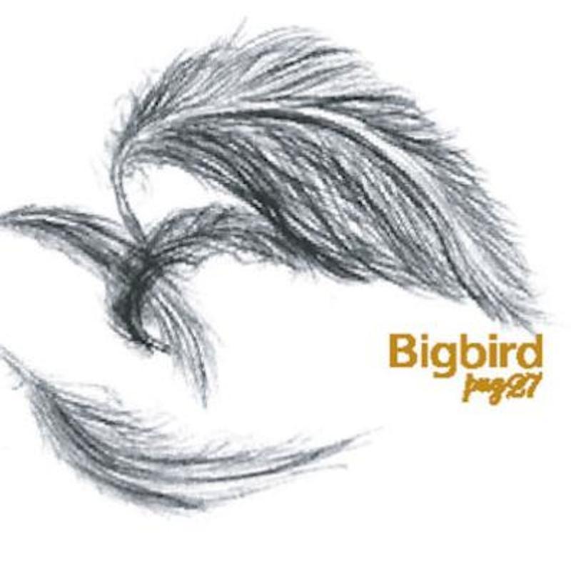 pug27 『Bigbird』